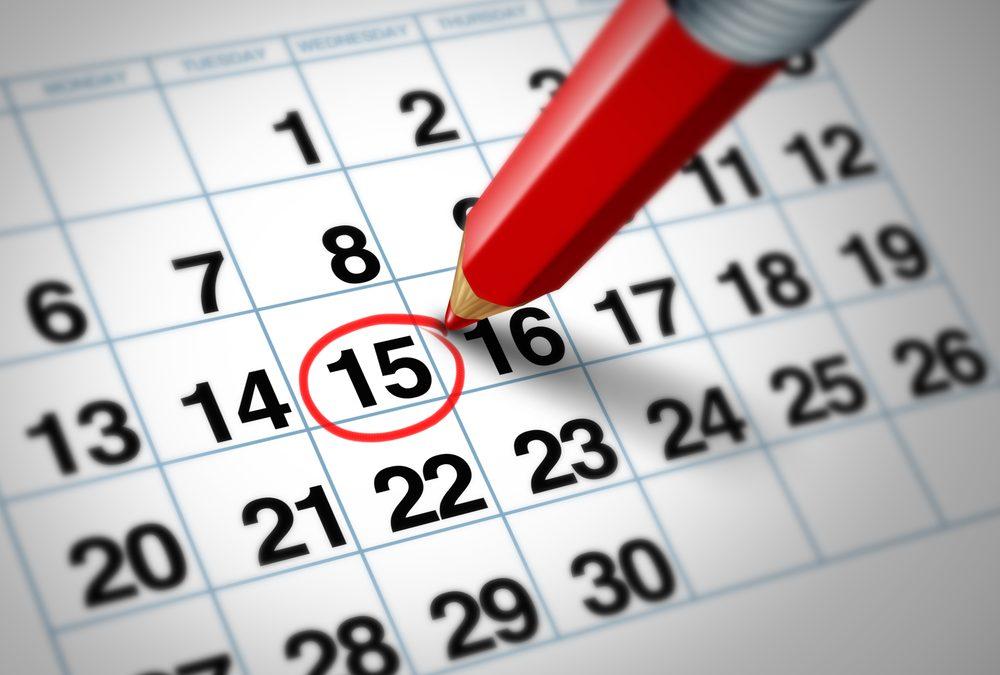 Calendario 2019 de NO recogida de basuras Ciudad Real